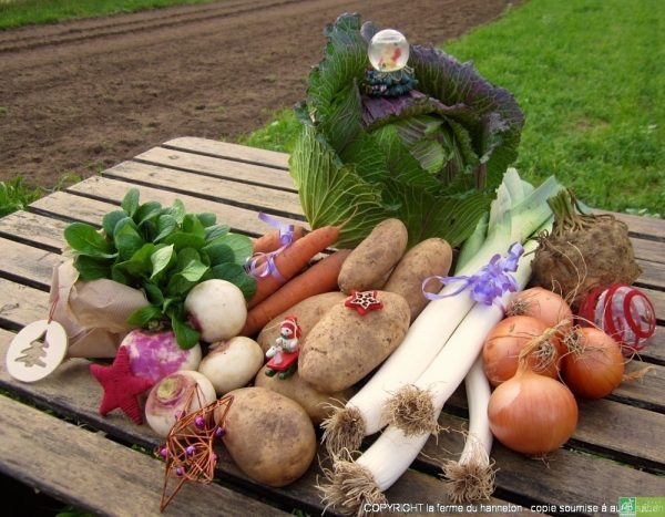 Panier à 20€ (exemple) :  1 kg de carottes, 800 g de poireaux, 200g de mâche, 2 kg de patates, 500 g d'oignons, 400g de navet, 1 chou de Pontoise, 1 céleri.