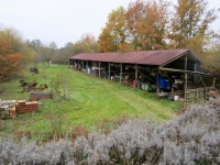 hangar agricole (et ouais !)