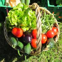 légumes à la pièce