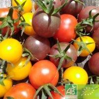 Tomates cerises barquette 250g