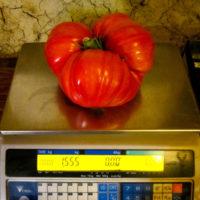 légumes au poids