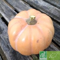 Courge Carat