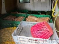 alors que dans le camion, personne ne prétend vouloir des croquettes