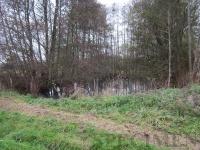 l'étang de la ferme #biodiversité #MaisFautAimerLeSulfure