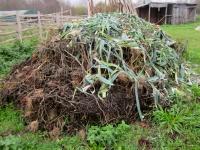 un des tas de compost...